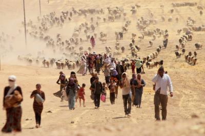 Yazidi minority in Iraq and Syria